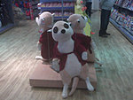 "Looking for ""huge"" meerkat toy-87706934.jpg"