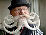 Movember-handlebar-moustache.jpg