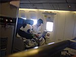 Pandas on a Plane!!-389916_204362352977012_122162524530329_472260_1483515819_n.jpg