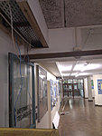 Cabling with Ferrets and other small mammals.-corridor.jpg
