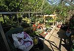 Garden 2012-img_2639-copy.jpg