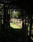 Garden 2012-img_2640-copy.jpg