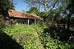Garden 2012-img_2642-copy.jpg