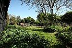 Garden 2012-img_2643-copy.jpg