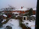 Snow!-p1180016.jpg