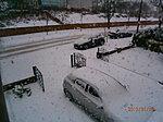 Snow!-p1180017.jpg