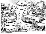 Snow!-317934_10151428506762386_124535861_n.jpg