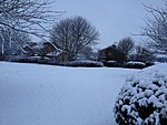 Snow!-img_1020-copy.jpg