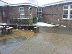 Snow!-1363014099047.jpg