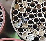UK Honey Bee population down 33.8% :(-product_1157.jpg