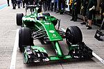 F1 Chat-caterham.jpg