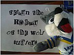 WANTED: RM Teddy Bear!-wolf1.jpg