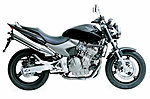 Looks like I have my first bike-cb600f-hornet.jpg