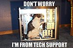 Best comments you've heard in the Tech Office...?-tech-support-funny-cat-pic.jpg
