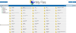 My Files display in Internet Explorer-myfiles-firefox.png