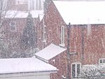 members/little-miss-albums-me-picture6403-snow.jpg