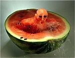 members/vikpaw-albums-carved-fruit-n-things-picture6394-att1117.jpg
